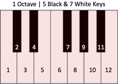 Numbered Notes 1 Octave on a Piano